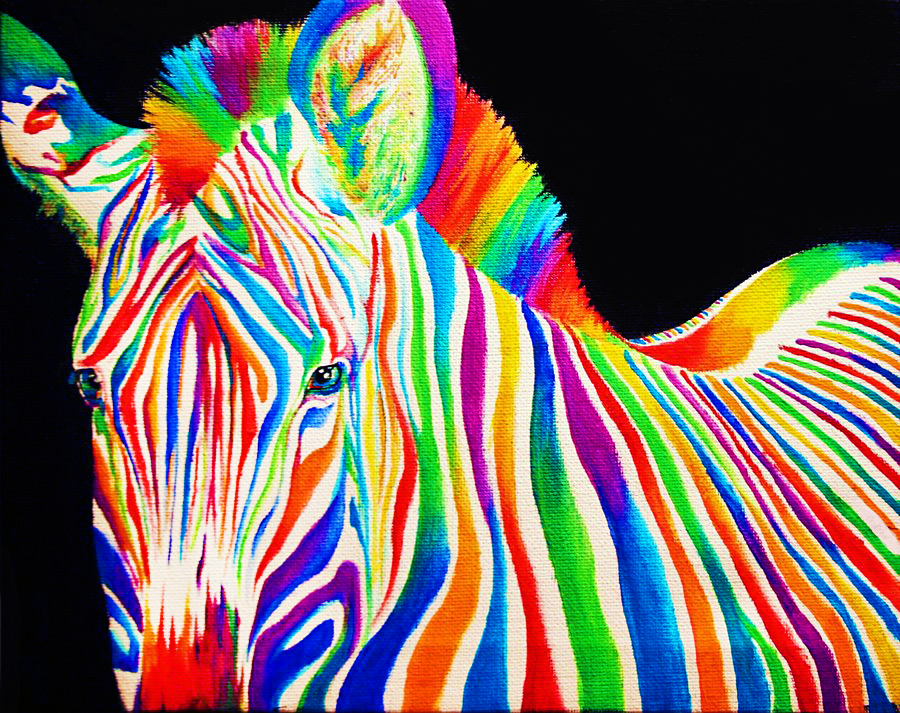 rainbow splash colour colors rainbows colorful animals moon chitra star virgo opportunity oct zebra body