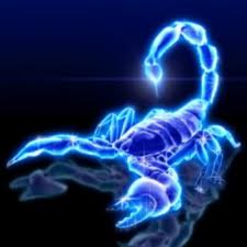 Venus in Scorpio ~ Mars in Leo - Vedic Astrology Blog